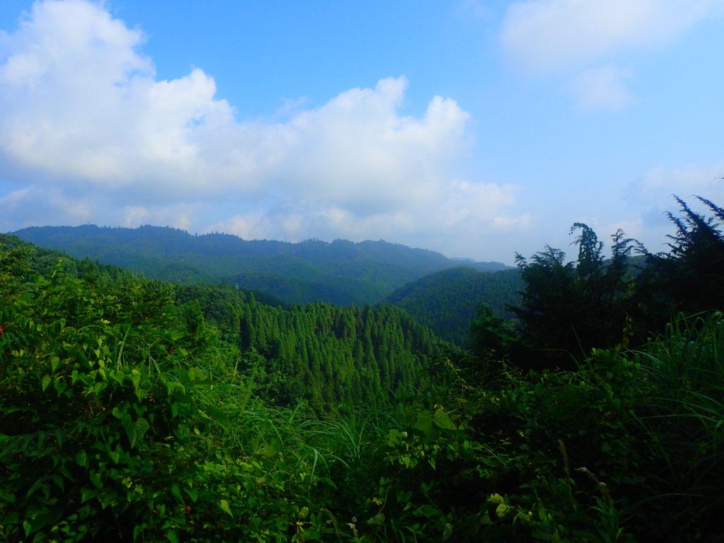 草戸峠からの眺め