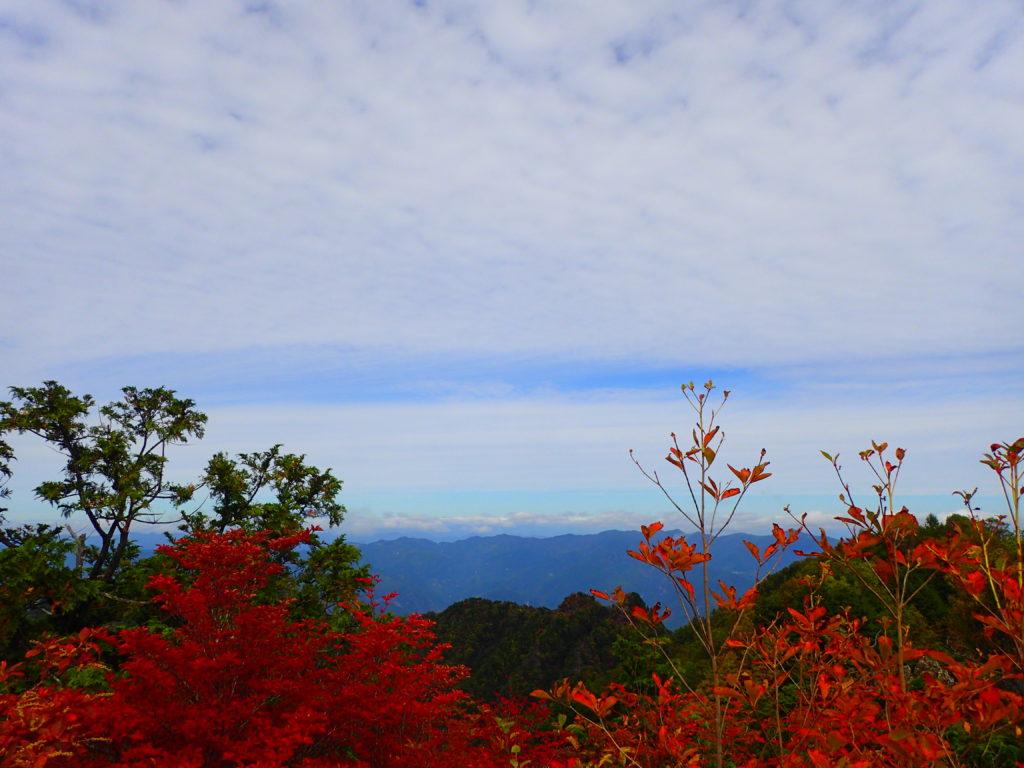 山頂の景色