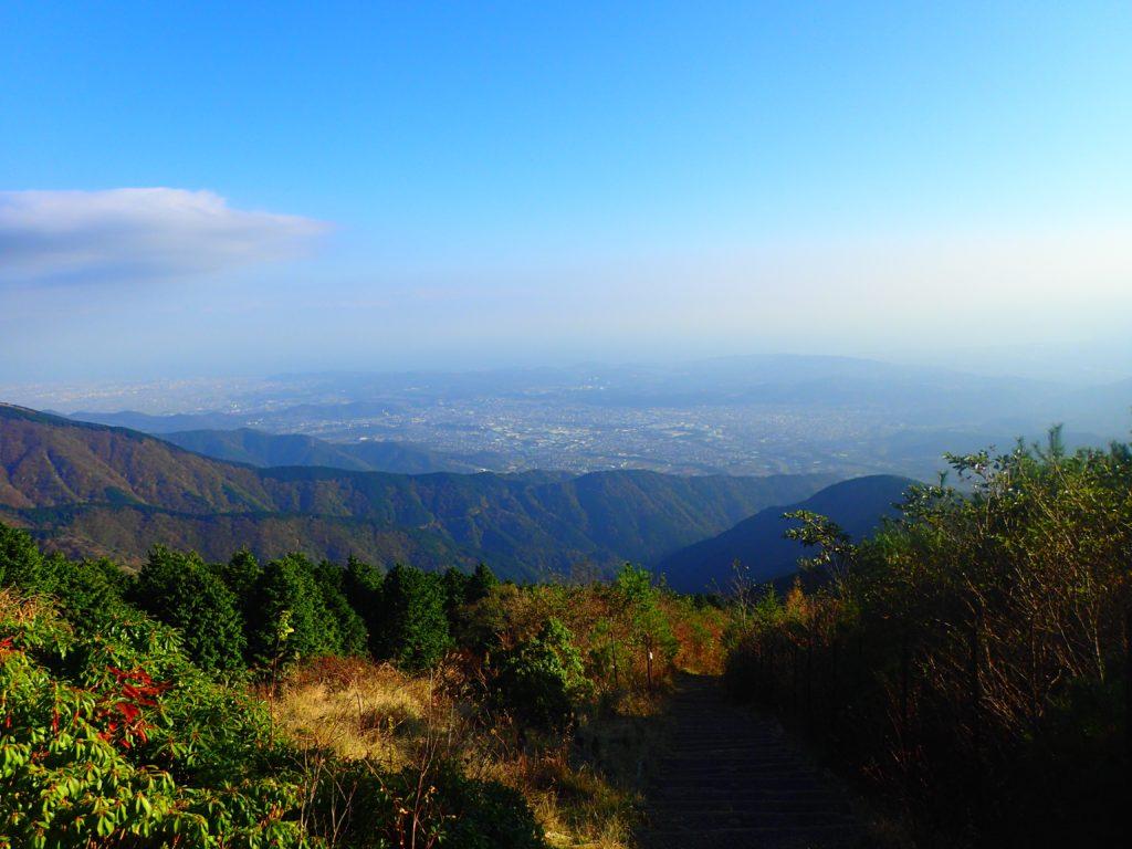 大倉尾根からの眺め