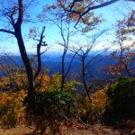 伊豆ヶ岳 初心者も上級者も楽しめる山で紅葉を愛でる