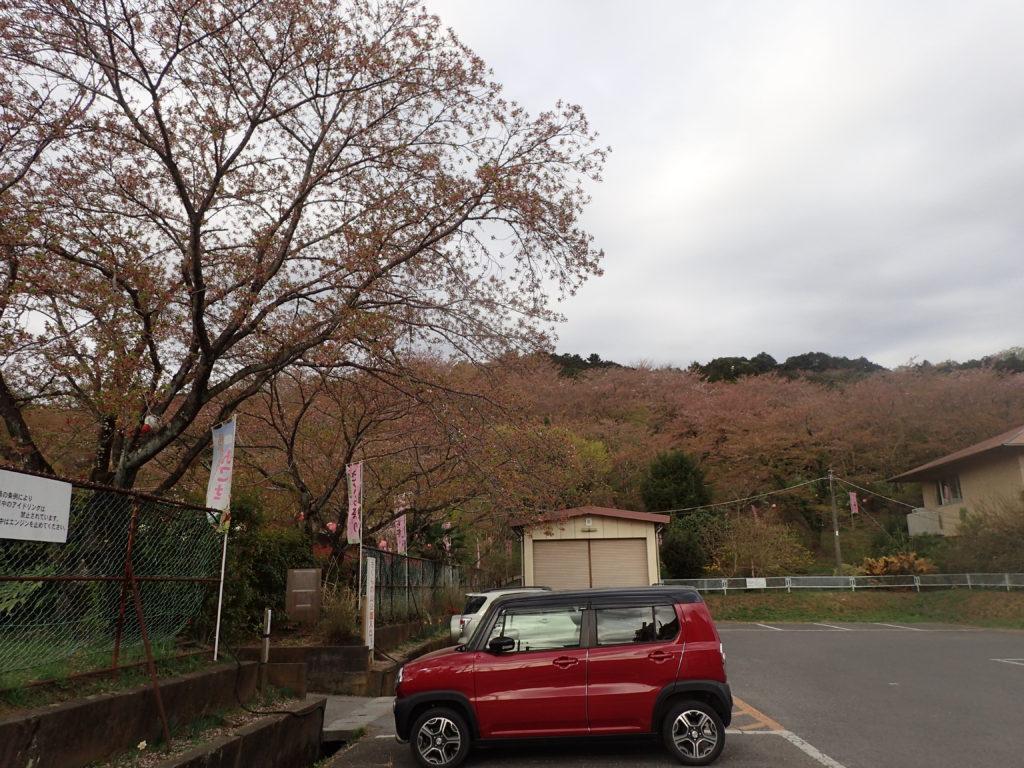 桜の山公園入り口