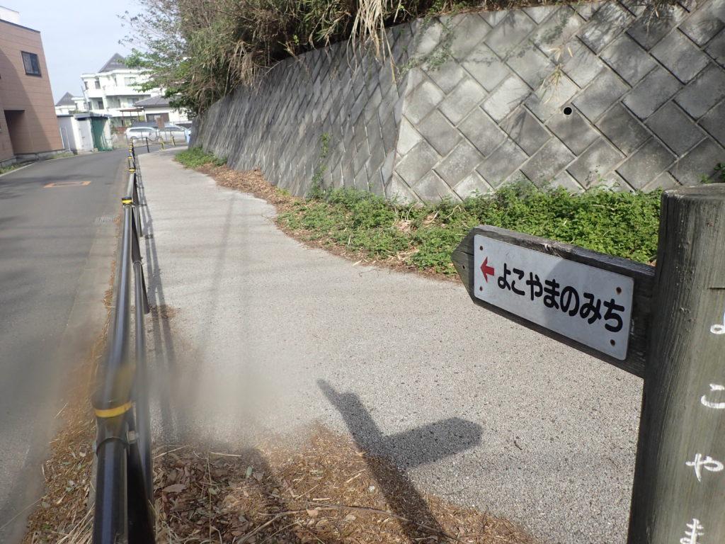 よこやまの道