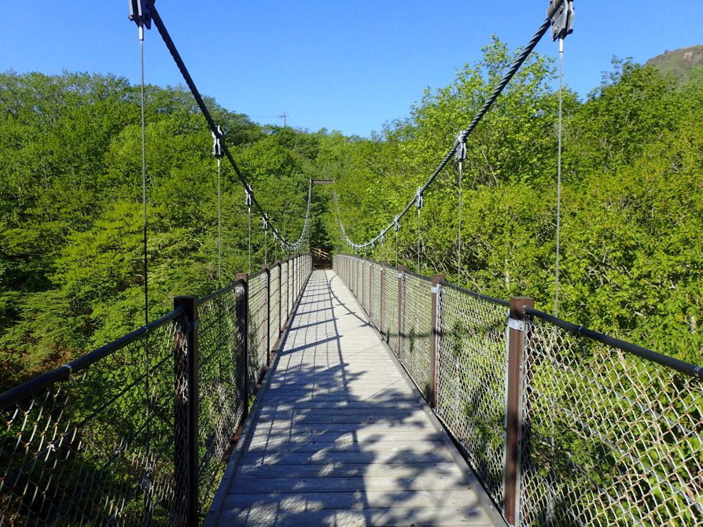 弁天吊り橋