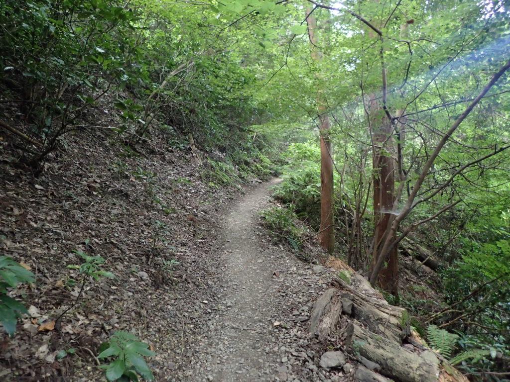 蛇滝コース