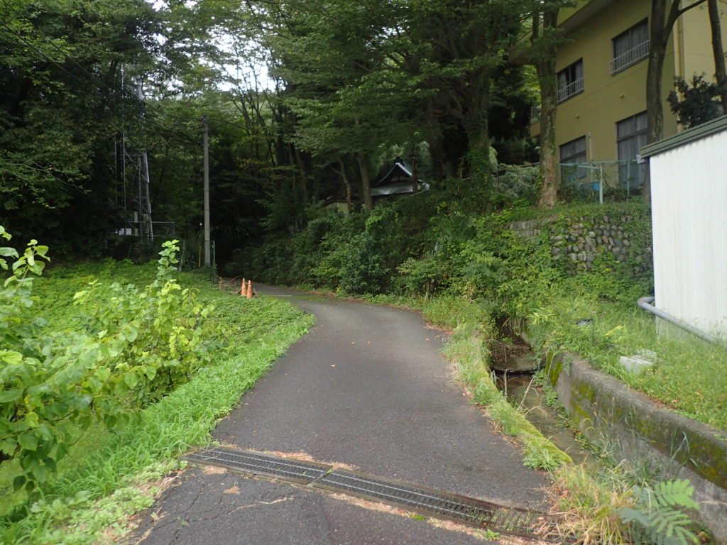 森の入り口