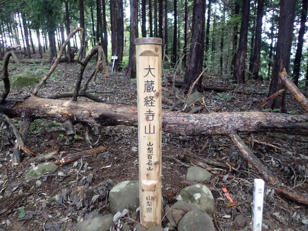 大蔵経寺山山頂へ