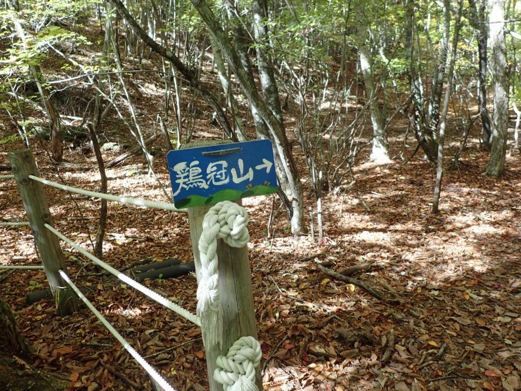 鶏冠山登山口