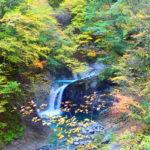 西沢渓谷 圧巻の紅葉と滝が織りなす美の世界