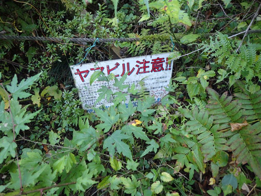ヤマビル注意の看板