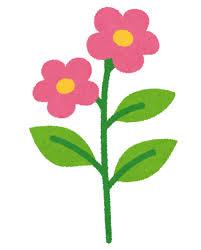 花しらべの アプリ