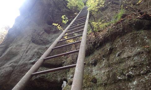 深草観音の梯子