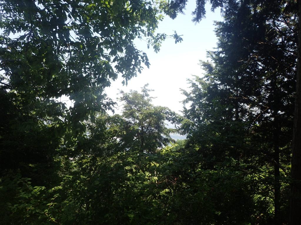 革籠石山からの景色