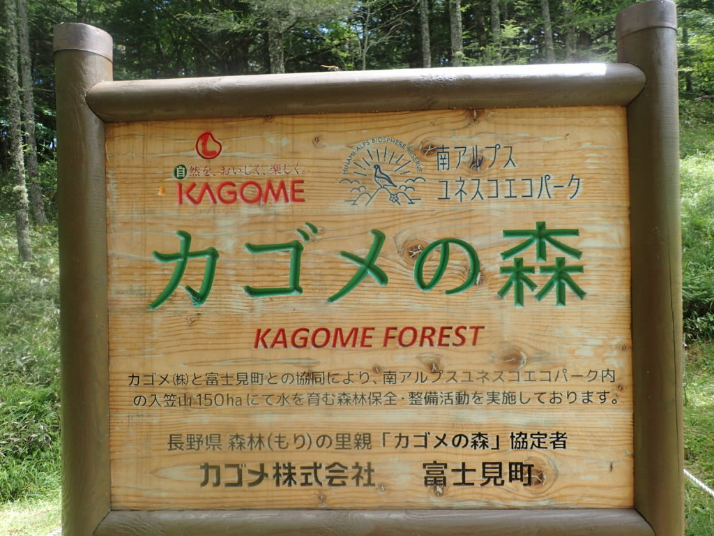 カゴメの森