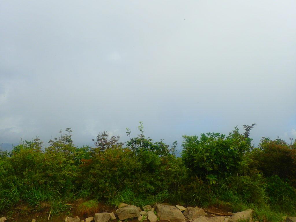 茅ヶ岳山頂