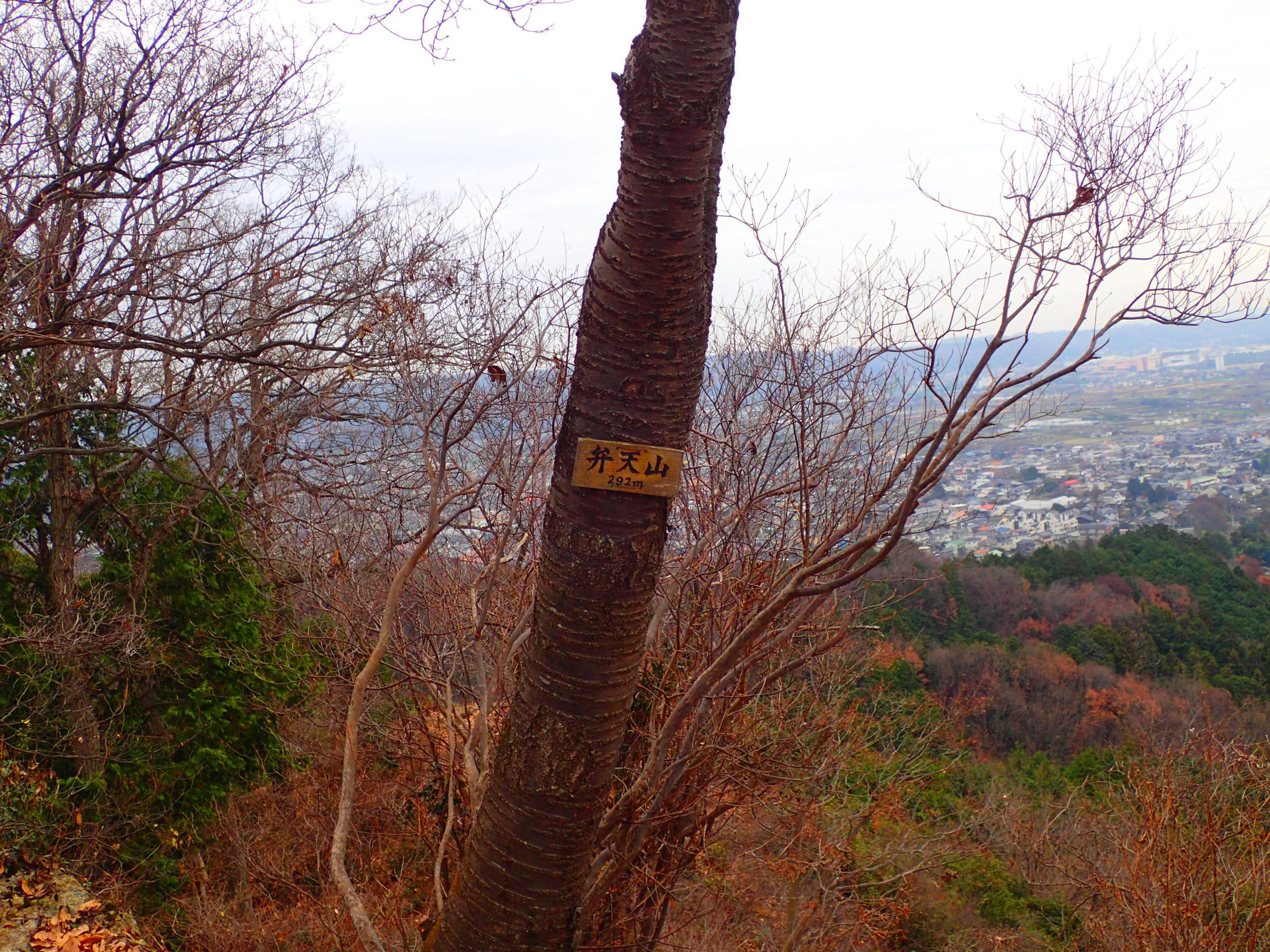 網代弁天山山頂
