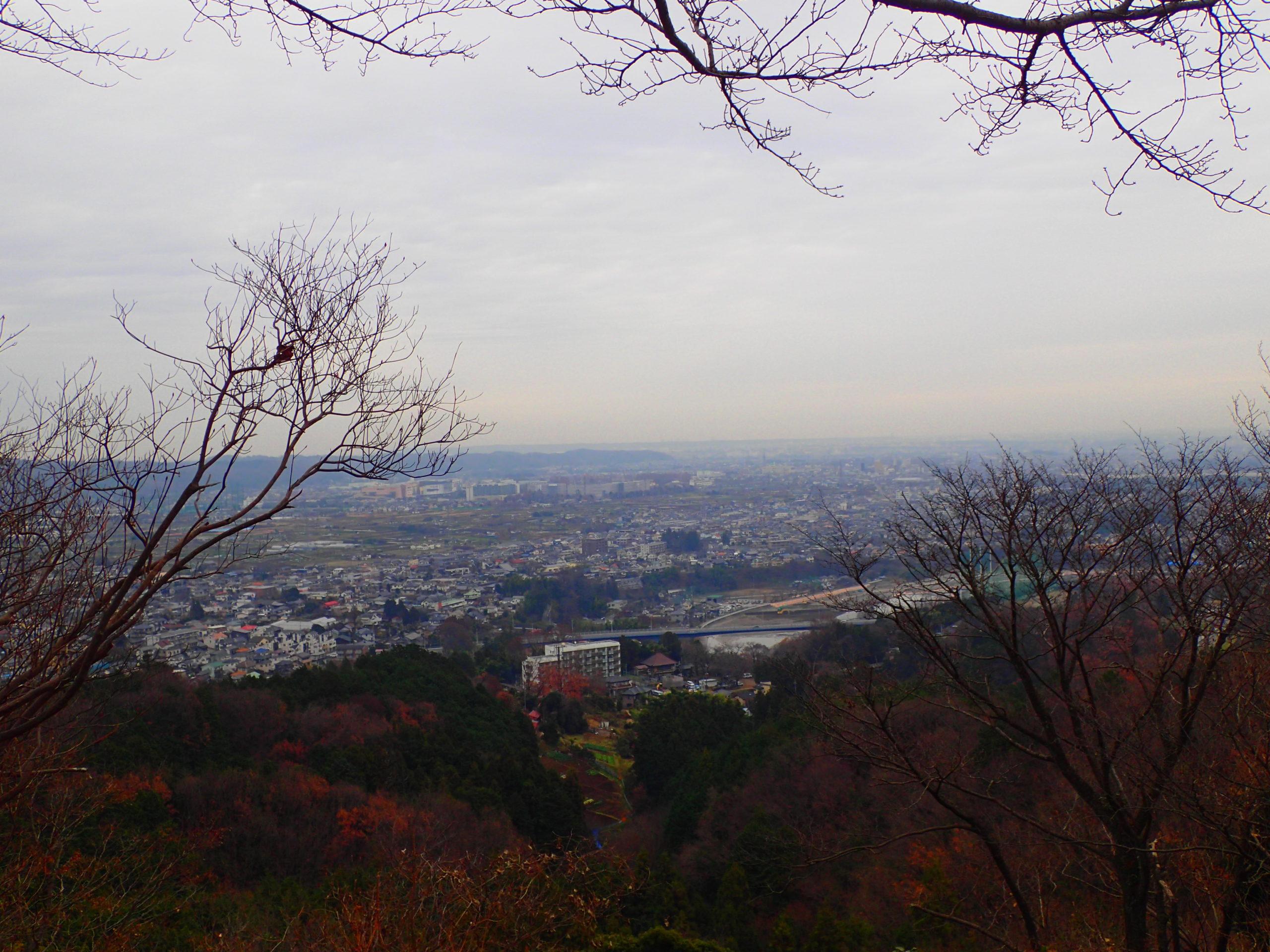 網代弁天山からの景色